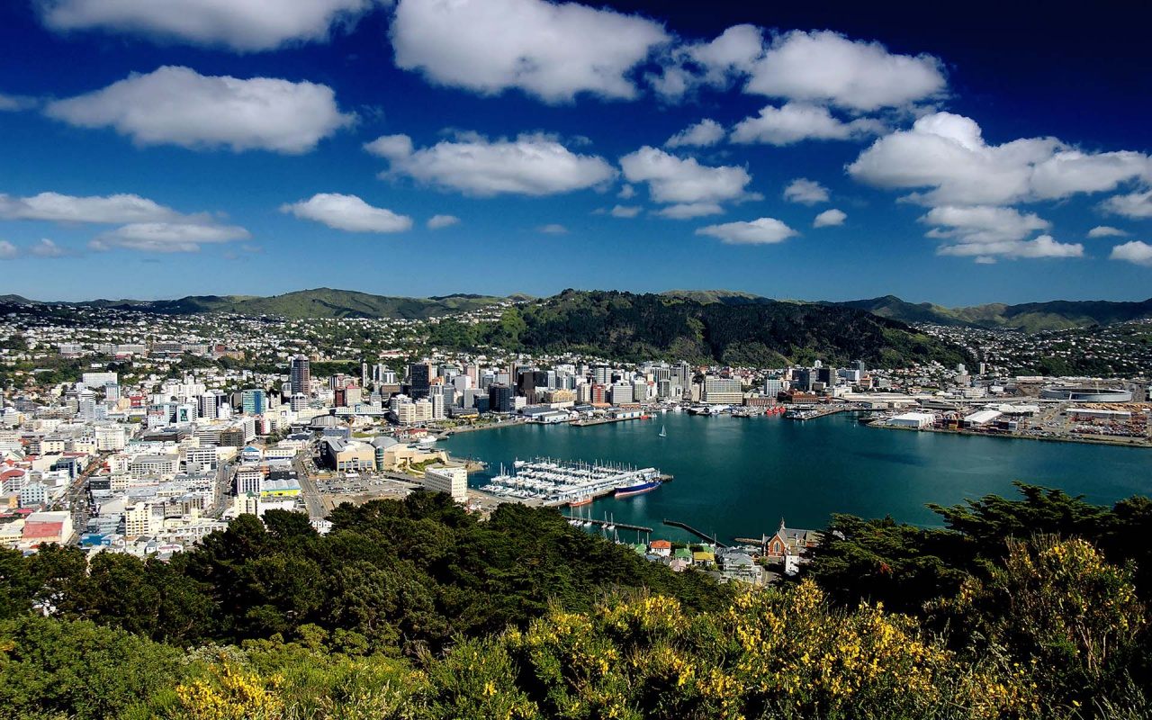 Your place to compare Wellington power prices Compare Now