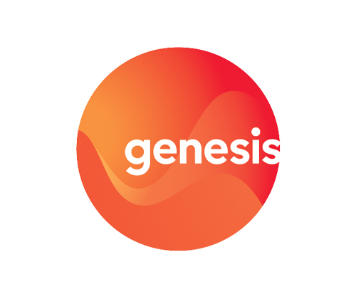 Genesis Energy New Zealand Electricity Company
